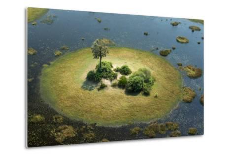 A Small Island in a Wetland in Botswana-Beverly Joubert-Metal Print
