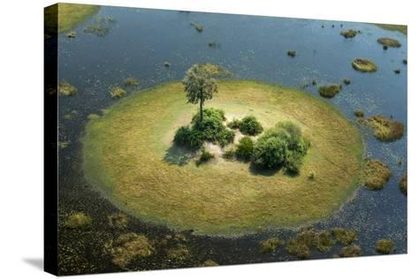 A Small Island in a Wetland in Botswana-Beverly Joubert-Stretched Canvas Print