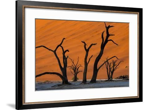 Dead Acacia Trees Silhouetted Against Sand Dunes at Deadvlei in Namibia-Alex Treadway-Framed Art Print
