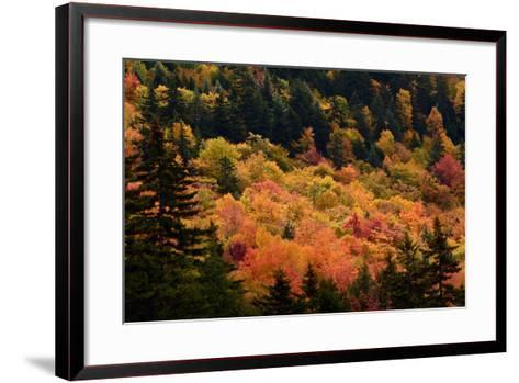 Scenic View from the Kancamagus Highway in the White Mountains of New Hampshire-Darlyne Murawski-Framed Art Print