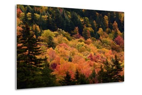 Scenic View from the Kancamagus Highway in the White Mountains of New Hampshire-Darlyne Murawski-Metal Print