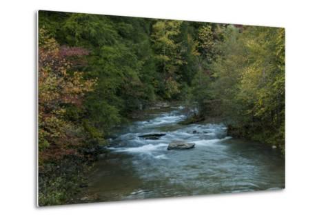 Stream Flowing During Autumn-Karen Kasmauski-Metal Print