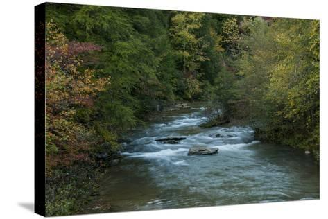 Stream Flowing During Autumn-Karen Kasmauski-Stretched Canvas Print