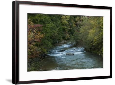 Stream Flowing During Autumn-Karen Kasmauski-Framed Art Print