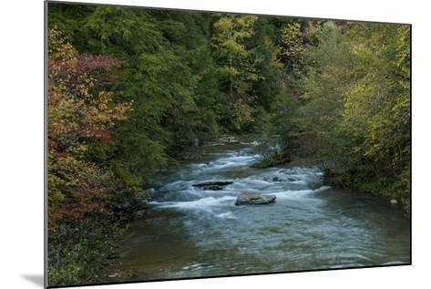 Stream Flowing During Autumn-Karen Kasmauski-Mounted Photographic Print