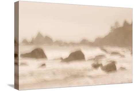 Rocky Shoreline at Hidden Beach in Redwood National Park-Philip Schermeister-Stretched Canvas Print