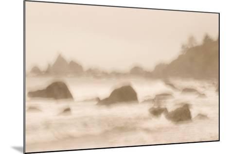 Rocky Shoreline at Hidden Beach in Redwood National Park-Philip Schermeister-Mounted Photographic Print