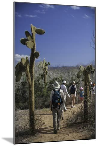 A Group of Tourists Hiking Along the Trail, Looking for Land Iguanas-Jad Davenport-Mounted Photographic Print