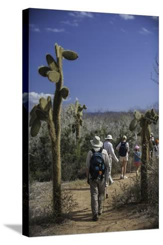 A Group of Tourists Hiking Along the Trail, Looking for Land Iguanas-Jad Davenport-Stretched Canvas Print