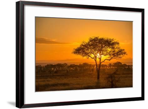Sunset in Serengeti National Park-Tom Murphy-Framed Art Print