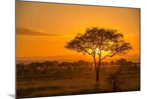 Sunset in Serengeti National Park-Tom Murphy-Mounted Photographic Print