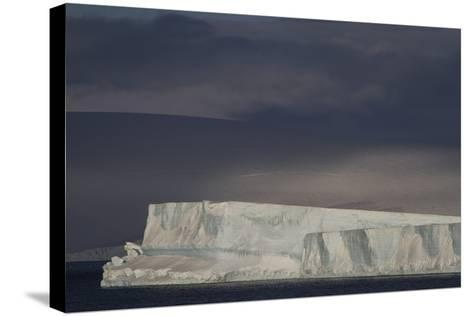 An Iceberg Illuminated by Early Morning Light Near the Antarctica Peninsula-David Griffin-Stretched Canvas Print