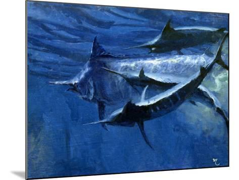 A Large Female Black Marlin Is Courted by Two Smaller Males Just Below the Surface-Mike Rivken-Mounted Photographic Print