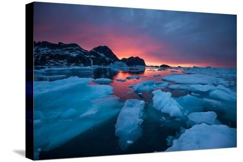 Breaking Ice at Sunrise-Andy Mann-Stretched Canvas Print
