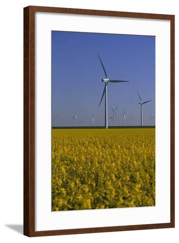 Windmill Park in Blooming Rape Field-Norbert Rosing-Framed Art Print