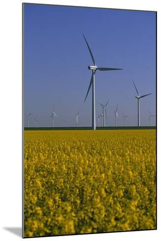 Windmill Park in Blooming Rape Field-Norbert Rosing-Mounted Photographic Print