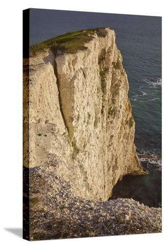 The Vertical Chalk Cliffs Near Durdle Door, in the Jurassic Coast World Heritage Site-Nigel Hicks-Stretched Canvas Print