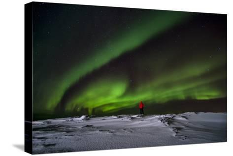 Person Watching Aurora Borealis on Iceland-Chad Copeland-Stretched Canvas Print