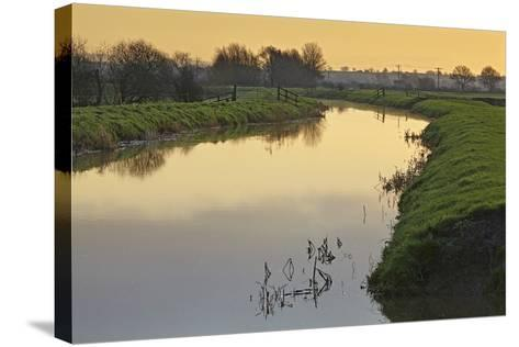 The River Brue Flowing Through Countryside on the Somerset Levels, Near Glastonbury-Nigel Hicks-Stretched Canvas Print