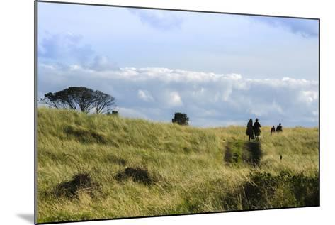 Couple Walking in a Grassy Field-Peter Mcbride-Mounted Photographic Print