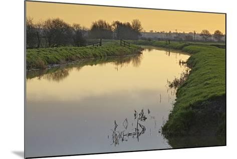 The River Brue Flowing Through Countryside on the Somerset Levels, Near Glastonbury-Nigel Hicks-Mounted Photographic Print