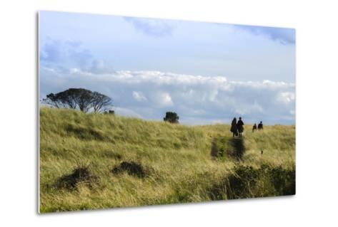 Couple Walking in a Grassy Field-Peter Mcbride-Metal Print