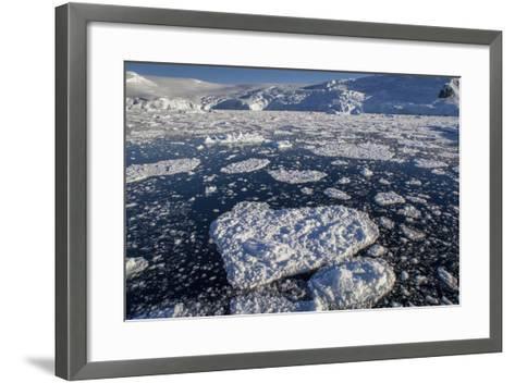 Heart Shaped Ice Near Port Lockroy-David Griffin-Framed Art Print