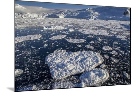 Heart Shaped Ice Near Port Lockroy-David Griffin-Mounted Photographic Print