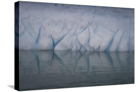 Ice Patterns on Cuverville Island-David Griffin-Stretched Canvas Print