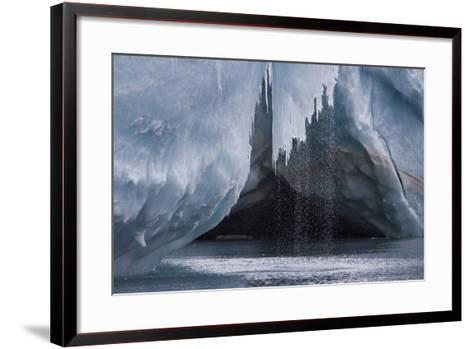 Water Pours Off a Glacier on the Edge of Dundee Island-David Griffin-Framed Art Print