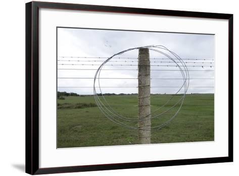 Coiled Barb Wire on a Fence Post-Tyrone Turner-Framed Art Print