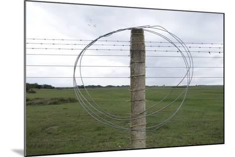 Coiled Barb Wire on a Fence Post-Tyrone Turner-Mounted Photographic Print