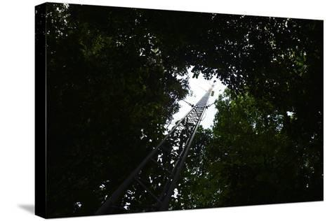 A Radio Tower, Used for Radio Tracking and Telemetry of Radio Tagged Species-Jonathan Kingston-Stretched Canvas Print