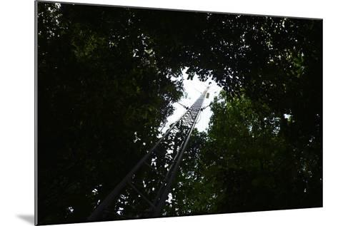 A Radio Tower, Used for Radio Tracking and Telemetry of Radio Tagged Species-Jonathan Kingston-Mounted Photographic Print