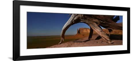 A Dead Mesquite Trees and Buttes-Raul Touzon-Framed Art Print
