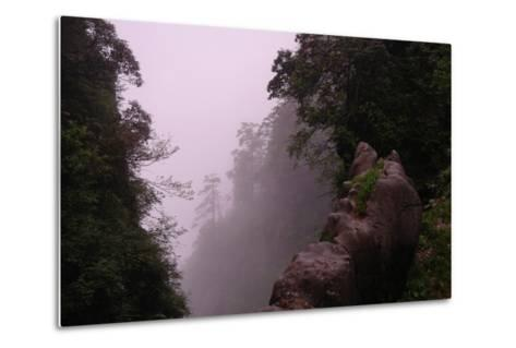 Misty Green Forest of Emei Shan-Tyrone Turner-Metal Print