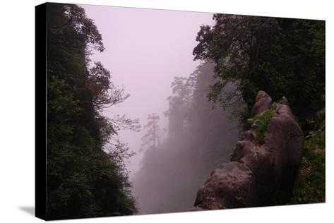 Misty Green Forest of Emei Shan-Tyrone Turner-Stretched Canvas Print