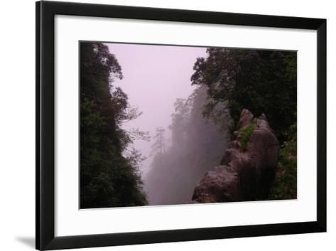 Misty Green Forest of Emei Shan-Tyrone Turner-Framed Art Print