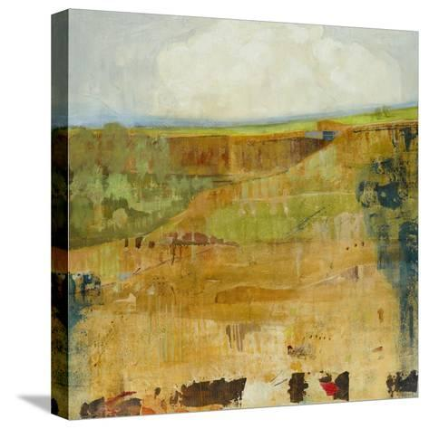 Canyon Reveal-Jill Martin-Stretched Canvas Print