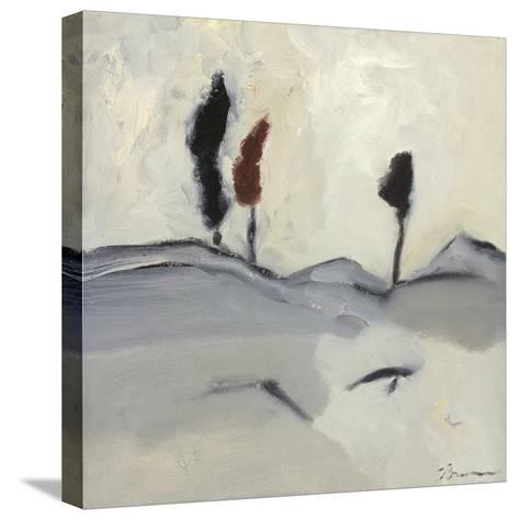 Winter Dance IV-Bradford Brenner-Stretched Canvas Print