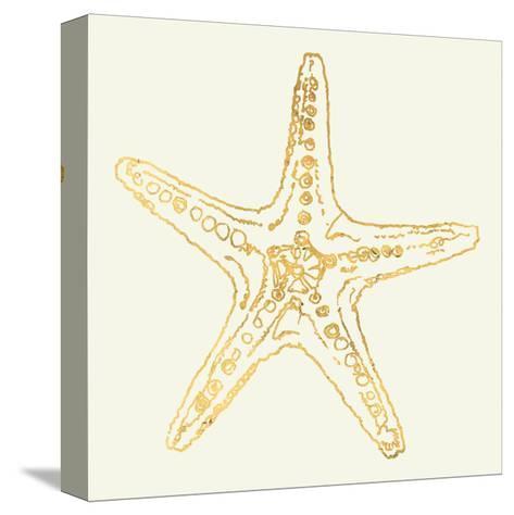 Coastal Breeze Shell Sketches VI-Anne Tavoletti-Stretched Canvas Print