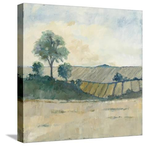 Fields before the Storm-Avery Tillmon-Stretched Canvas Print