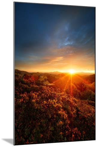 Morning Break, Sunrise and Clouds Over Mount Diablo, Oakland, Bay Area-Vincent James-Mounted Photographic Print