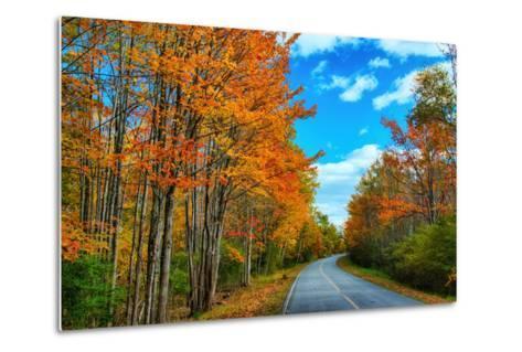 Autumn Road, Acadia National Park, Maine-Vincent James-Metal Print
