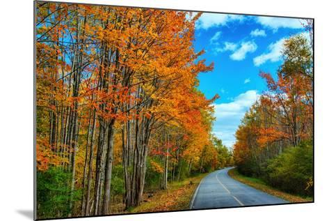 Autumn Road, Acadia National Park, Maine-Vincent James-Mounted Photographic Print