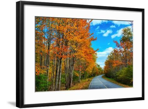 Autumn Road, Acadia National Park, Maine-Vincent James-Framed Art Print