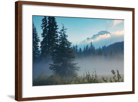 Misty Mount Hood Meadow in Spring, Oregon Wilderness-Vincent James-Framed Art Print