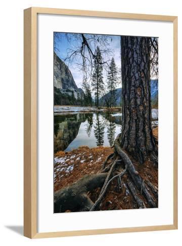 Mid Winter Riverside Reflections Yosemite National Park-Vincent James-Framed Art Print