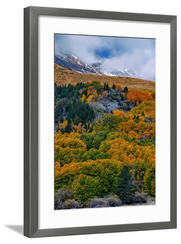 Fall Color and Stormy Skies in the Eastern Sierras, June Lake-Vincent James-Framed Art Print