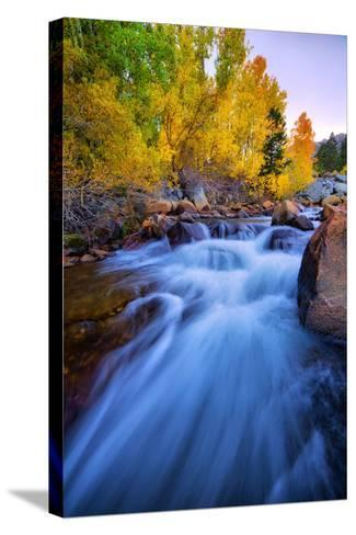 Autumn in Bishop Creek, Mountains, Eastern Sierras-Vincent James-Stretched Canvas Print